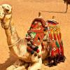 EGIPTO DUBÁI SEGUNDA SALIDA