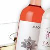EL MUNDO DEL VINO: VIÑA MAQUIS & VIÑA CALCU
