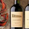 El Mundo del Vino: Viña El Principal