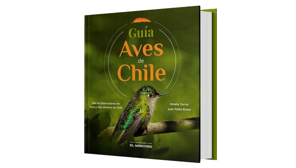 Guía aves de Chile