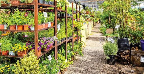 Garden Center Chile