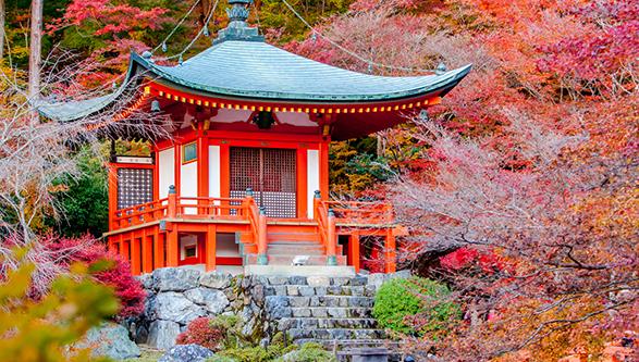 Corea del sur, Taiwán y Japón